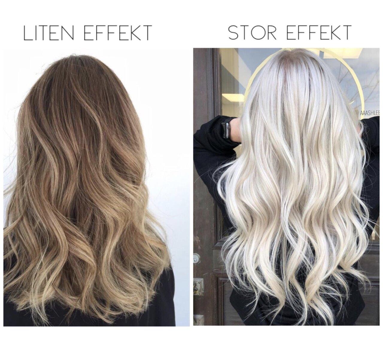 silverschampo torrt hår
